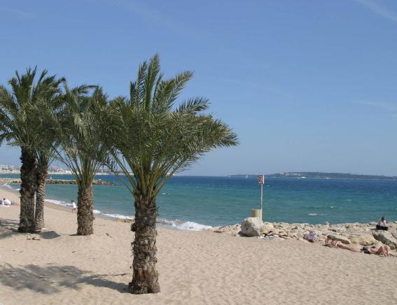 Petit coin de quiétude loin des plages privées très prisées de la Croisette