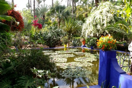 morocco_gardens_jardin_475423blog